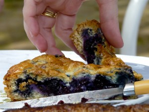 where to get the best blueberry pie in south jersey